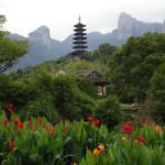 aromaty-v-kitajskom-iskusstve-fen-shuj